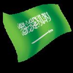 Saudi-vpn